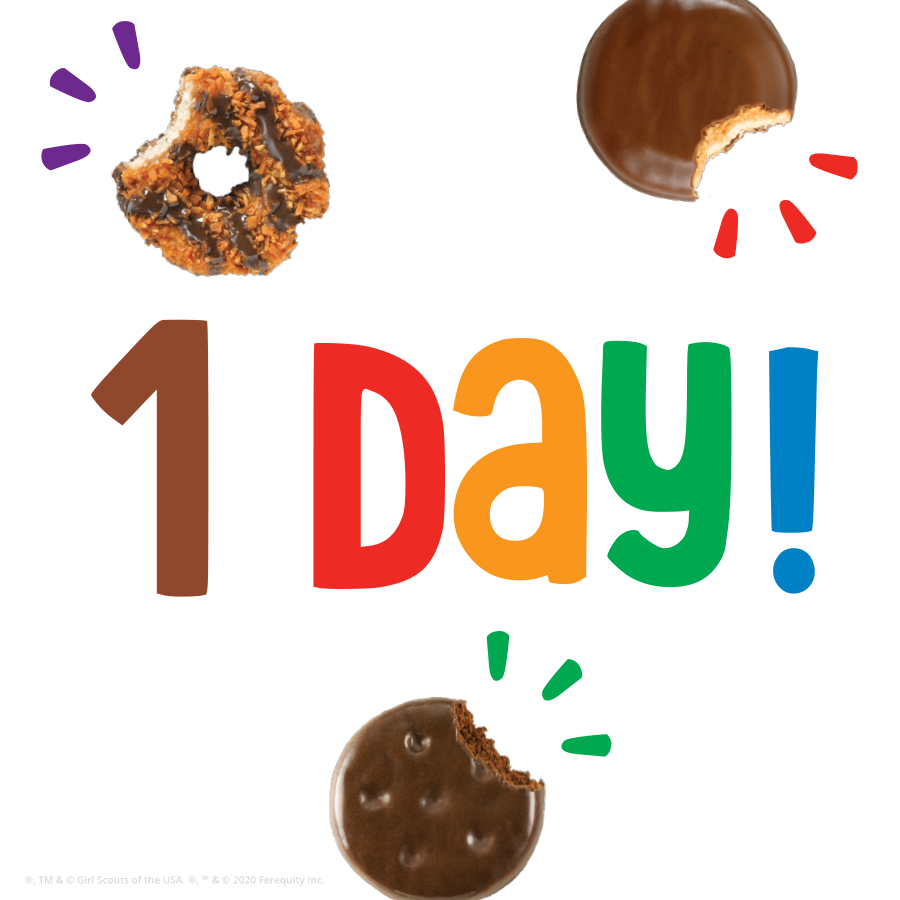 CookiePhase 1Day